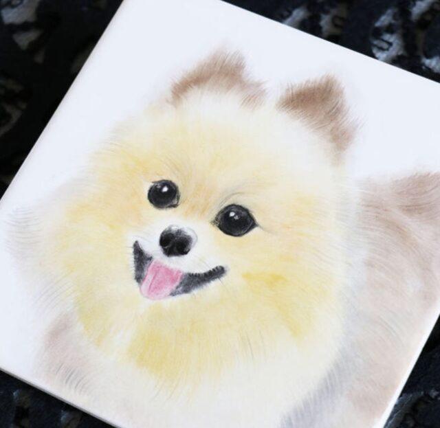 miroom動画レッスンスポンジで描く犬の描き方