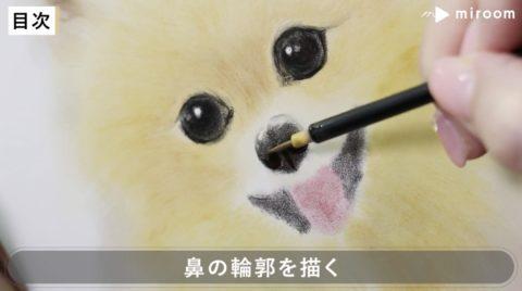 miroom動画レッスン鼻の輪郭の描き方